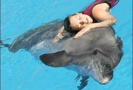 Польза дельфинотерапии